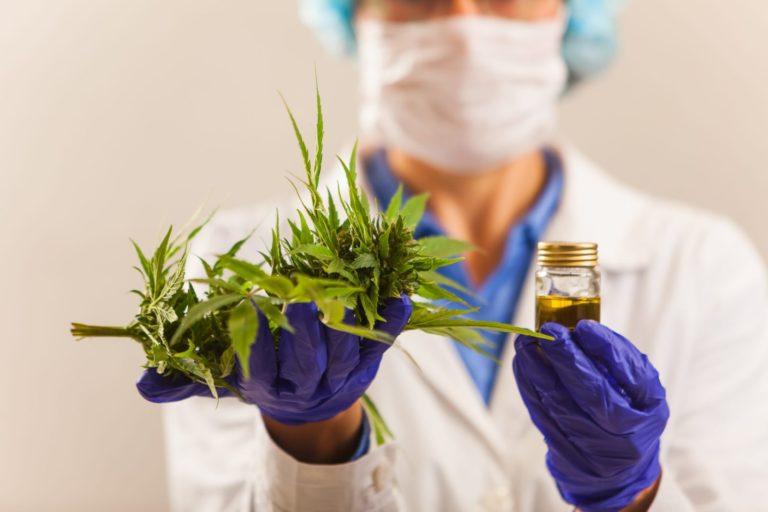 Cannabis médical – Adoption de la modification de la loi suisse sur les stupéfiants (médicaments à base de cannabis)